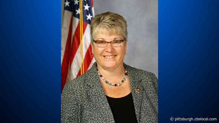 Pa. State Representative Pam Snyder Extremely Frustrated Her District Wasn't Included In 'Green' Announcement