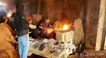 Polícia Civil incinera mais de duas toneladas de drogas apreendidas em Barcarena - G1