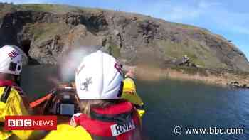 Woman rescued after 20ft cliff fall at Elie in Fife - BBC News