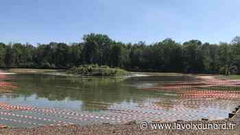 Attaqués par les cormorans, les étangs de l'Émolière à Libercourt protégés par des kilomètres de rubalise - La Voix du Nord