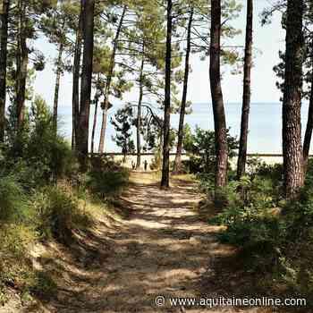 Biscarrosse tourisme entre lacs et océan - Aquitaine Online