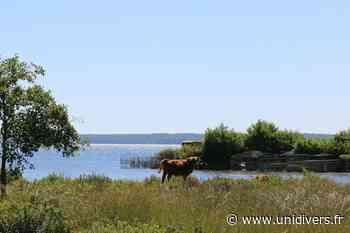 Visite guidée en zones humides Biscarrosse 2 mai 2020 - Unidivers