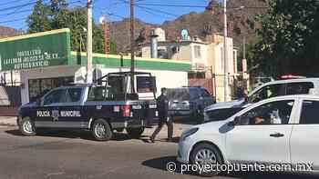 Encuentran a joven colgado de una soga al cuello en Guaymas - Proyecto Puente