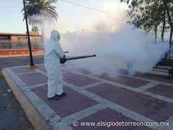 Combaten dengue en San Pedro y Madero - El Siglo de Torreón