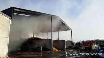 Hevige loodsbrand in Langemark-Poelkapelle - Focus en WTV