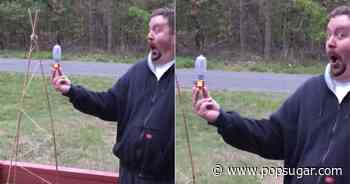 Watching This Man's Face as a Hummingbird Feeds Out of His Hand Is So Dang Delightful - POPSUGAR