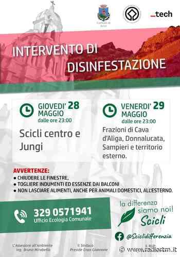 Scicli, il programma della disinfestazione Il 28 e il 29 maggio - Radio RTM Modica