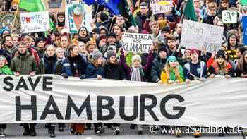 Hamburg: Zerstört Corona die Klima-Bewegung Fridays for Future?