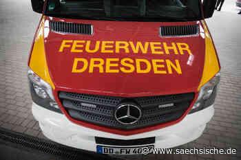 Dresden: Baum im Weinberg brennt - Sächsische Zeitung