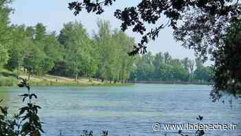 Rabastens. Le lac des Auzerals : un bon plan pour se détendre - LaDepeche.fr