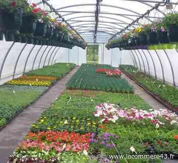 Monistrol-sur-Loire : la vente de fleurs de l'école privée au profit des commerçants - La Commère 43