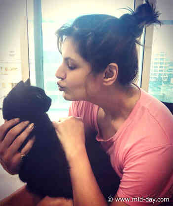 Zareen Khan Lockdown Diaries: From celebrating birthday to sharing funny videos - entertainment - Mid-Day