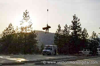 Penticton Search and Rescue airlifts injured mountain biker near Naramata - Vernon Morning Star