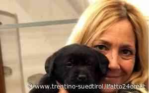 Omicidio di Nago-Torbole, scarcerato per il coronavirus il marito di Eleonora Perraro - ilfatto24ore.it