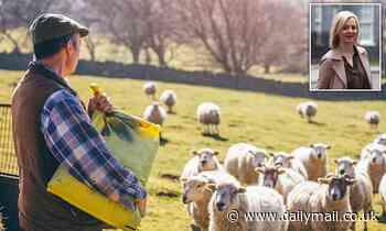 Tories rebel as Trade Secretary Liz Truss 'plots to betray UK farmers' for Trump deal