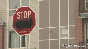 Bilingual stop signs vandalized in Calgary