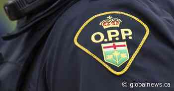80-year-old charged after allegedly assaulting LCBO security guard in Alliston, Ont. - Globalnews.ca