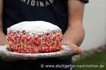 Gegenseitige Hilfe - Tausche Schwimmstunde gegen Kuchen - Stuttgarter Nachrichten