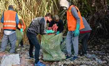 Capital: limpiaron 4 baldíos en Desamparados y Concepción - Diario Huarpe