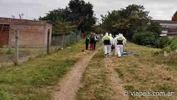 Femicidio: encontraron el cuerpo de una mujer sobre unas vías en Concepción - Vía País