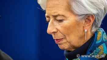 """EZB-Anleihekäufe: Eurokritiker Schäffler fordert Stellungnahmen zu umstrittenem """"Whatever-it-takes""""-Urteil - WELT"""
