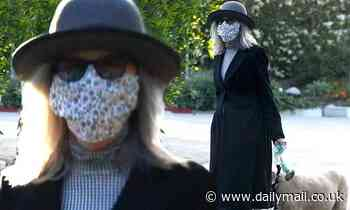 Diane Keaton is unrecognizable in face mask, sunglasses and derby hat during walk with beloved dog