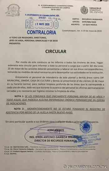 Cosamaloapan anuncia que reinicia actividades el 25 de Mayo, pese a que hay elevados casos de COVID19 - plumas libres