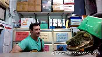 Teachers' Green Day ditty gets toes tapping – Bundaberg Now - Bundaberg Now
