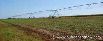 Bundaberg Region remains drought declared – Bundaberg Now - Bundaberg Now