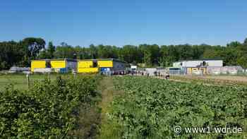 Proteste bei Spargelbauer in Bornheim - WDR Nachrichten