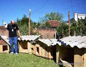 Apenados do Presídio de Arroio do Meio fabricam casinhas para cachorros abandonados - Infomativo