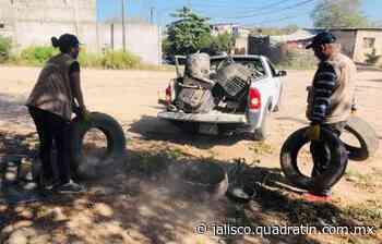 Fumigan y descacharrizan Puerto Vallarta para combatir el Dengue - Quadratín Michoacán