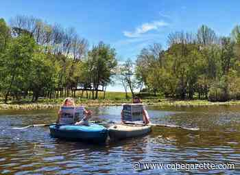 Kayaking with the Cape Gazette on Beaverdam Creek - CapeGazette.com