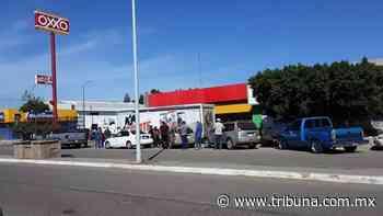 En Navojoa y Huatabampo retan a la pandemia y hacen cola por cerveza - TRIBUNA