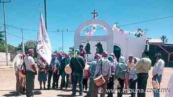 En Huatabampo la etnia Mayo celebra la fiesta del Espíritu Santo - TRIBUNA