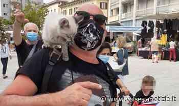 A Borgosesia il mercato riapre i battenti tra curiosità e solidarietà FOTO - valsesianotizie.it