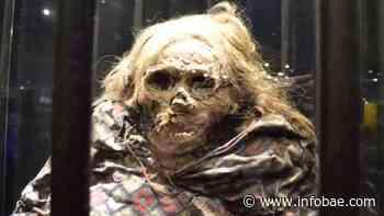 "La verdad sobre la leyenda de la ""momia bruja"" en Guanajuato - infobae"