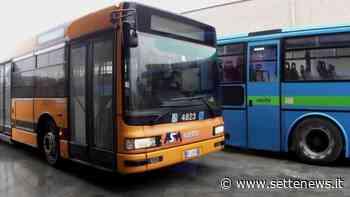 Via libera al TPL a Castellanza - Settenews