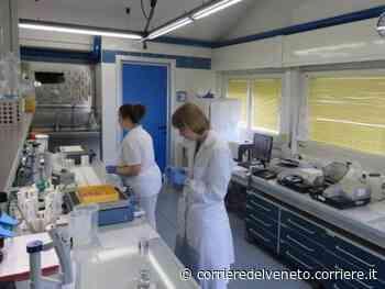 Negrar-Oxford: parte lo studio internazionale sull'idrossiclorichina. In squadra 40 mila professionisti - Corriere della Sera