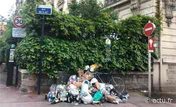 Saint-Mandé. Aux abords du Bois de Vincennes, les déchets s'amoncellent - actu.fr