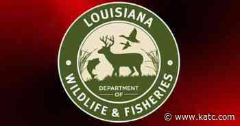 Louisiana Fisheries set to receive $73 million in federal assistance - KATC Lafayette News