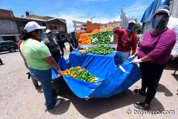 Beneficio alimentario y económico con programa 'Irapuato Solidario' - Bajioweb