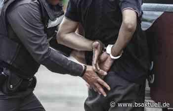 Neu-Ulm: Mehrere Polizeibeamte durch aggressiven 33-Jährigen verletzt - BSAktuell