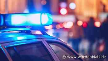Deutlich über zwei Promille – Mann beleidigt und bedroht Polizisten - Wochenblatt.de