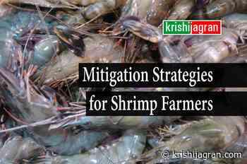 Covid-19: College of Fisheries Organizes Industry- Farmer- Academia Webinar for Shrimp Farmers - Krishi Jagran