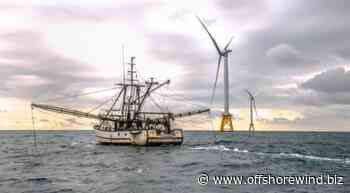 US to Conduct Fisheries Research to Guide Offshore Wind Development - Offshore WIND