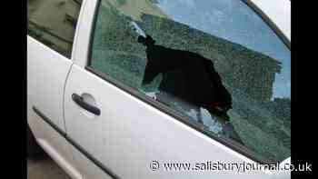 Warning after handbag stolen from car in New Forest car park - Salisbury Journal
