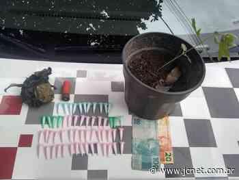 Com apoio do Canil, PM apreende droga em chácara de Bauru - JCNET - Jornal da Cidade de Bauru