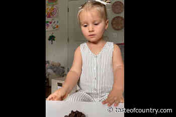 WATCH: Tyler Hubbards Little Girl Takes Toddler Challenge - Taste of Country