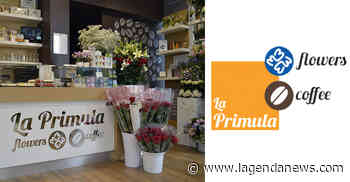 """""""La Primula Flowers & Coffee"""" di Avigliana riapre lunedì 25 maggio con una sorpresa - http://www.lagendanews.com"""